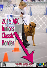 AKC Juniors Commemorative Border
